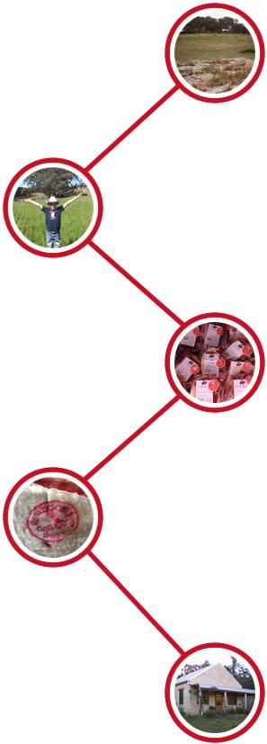 Gundooee Timeline